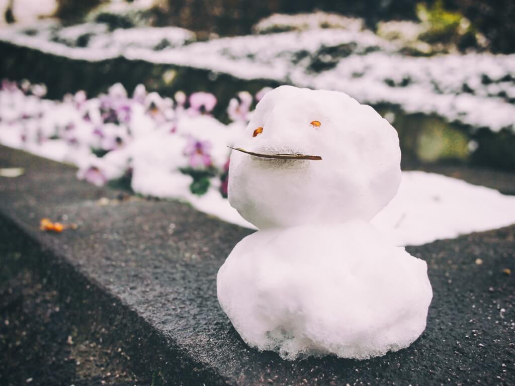 東 大阪 市 の 1 週間 の 天気 予報