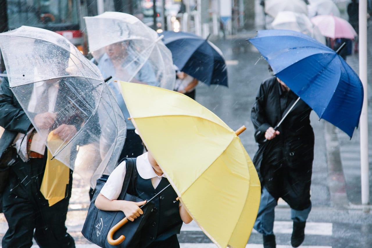 市 日間 和歌山 天気 10